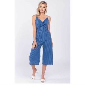 Everly Striped Tie Front Jumpsuit NWT